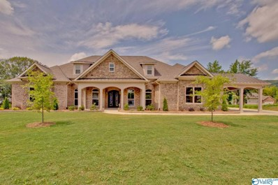 3066 Ginn Point Road, Owens Cross Roads, AL 35763