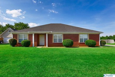 115 Old Eli Road, Toney, AL 35773