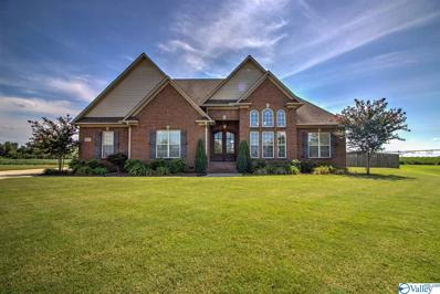 13419 Morning Glory Street, Athens, AL 35613