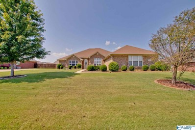 122 Hardiman Place Lane, Madison, AL 35756