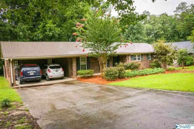 115 Windy Hill Road, Rainbow City, AL 35906