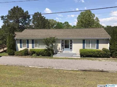 3190 Pilgrims Rest Road, Southside, AL 35907