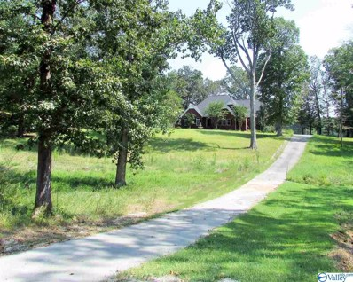 11224 County Road 87, Moulton, AL 35650