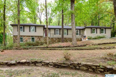 2806 Burningtree Mountain Road, Decatur, AL 35603