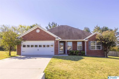 112 Turtle Point Drive, New Market, AL 35761