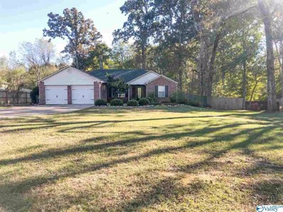 2532 Ready Section Road, Toney, AL 35773
