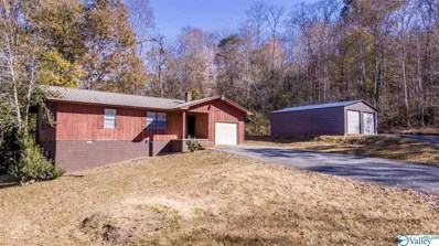 505 34th Street Ne, Fort Payne, AL 35967