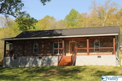 7923 County Road 137, Valley Head, AL 35989