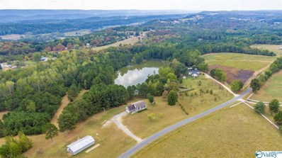 2480 County Road 114, Valley Head, AL 35989