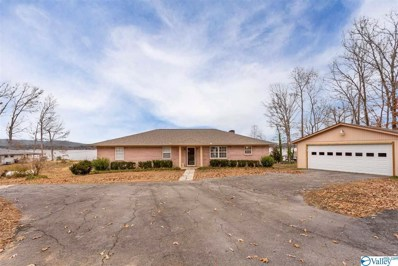 249 Riverview Drive, Ashville, AL 35953