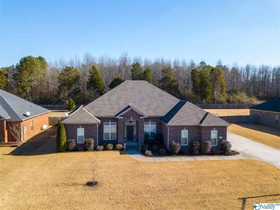 29844 Windsor Lane, Harvest, AL 35749