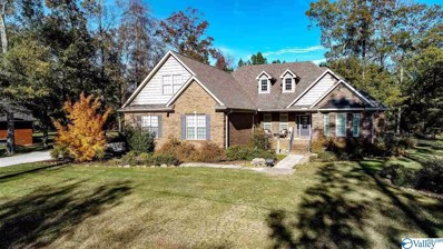 113 Honey Brook Drive, Toney, AL 35773
