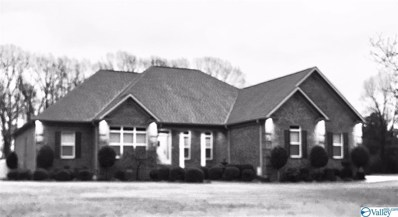 335 South Mountain Drive, Trinity, AL 35673