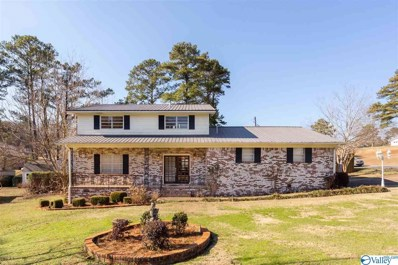 402 Willowbrook Avenue, Glencoe, AL 35905