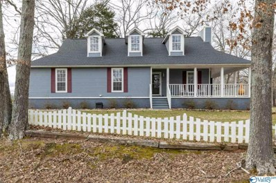 409 Mint Road, New Market, AL 35761