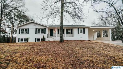3923 Lyndale Drive Nw, Fort Payne, AL 35968
