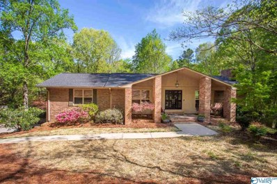 207 Holley Drive, Rainbow City, AL 35906
