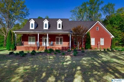 668 Walt Campbell Road, Hazel Green, AL 35750