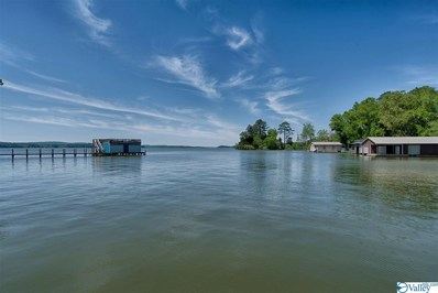 1472 Skyline Shores Drive, Scottsboro, AL 35769