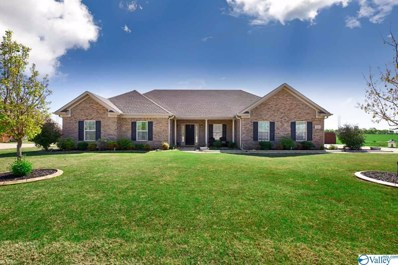 121 Shoals Road, Meridianville, AL 35759
