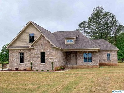 107 Moon View Drive, Toney, AL 35773