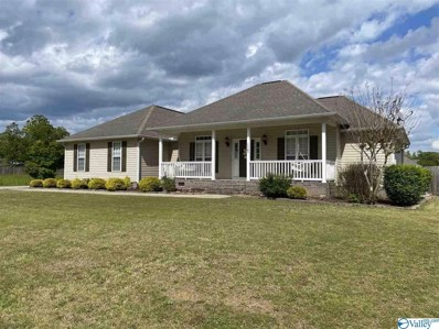 117 Saint Martin Drive, Rainbow City, AL 35906