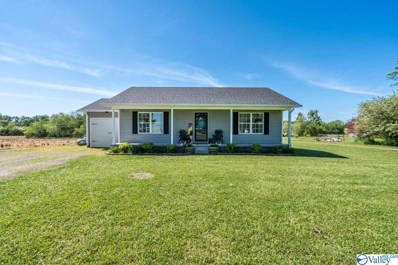10083 County Road 50, Fyffe, AL 35971