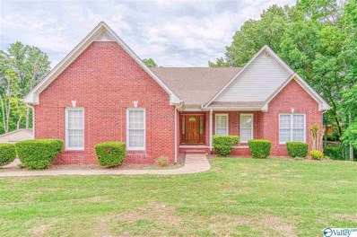 250 Beech Hollow Road, Killen, AL 35645