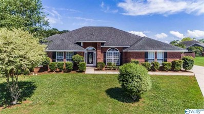 109 Lazy River Court, Harvest, AL 35749