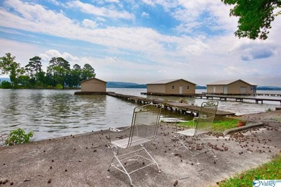 1010 Skyline Shores Drive, Scottsboro, AL 35769