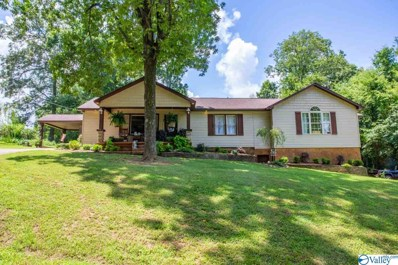 983 Rube Robinson Road Real Estate Details