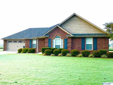 28262 Hinton Lane, Toney, AL 35773