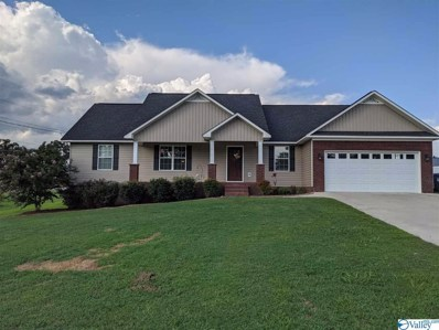 725 Rabbittown Road, Glencoe, AL 35905