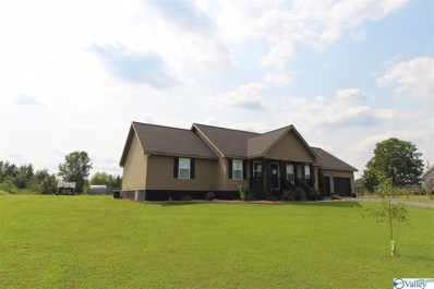 174 County Road 843, Fyffe, AL 35971