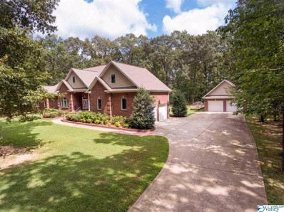 285 Toney Acres Drive, Toney, AL 35773