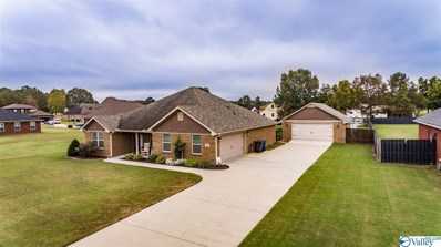 212 Hope Ridge Drive, New Hope, AL 35760