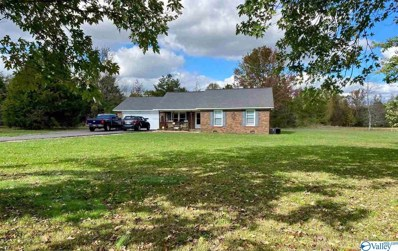 1989 Elkwood Section Road, Hazel Green, AL 35750