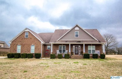 27880 Meadowgreen Drive, Toney, AL 35773