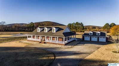 1149 Cave Springs Road, Owens Cross Roads, AL 35763