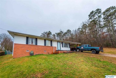 408 15th Street Nw, Fort Payne, AL 35967