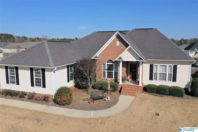113 Saint Martin Drive, Rainbow City, AL 35906