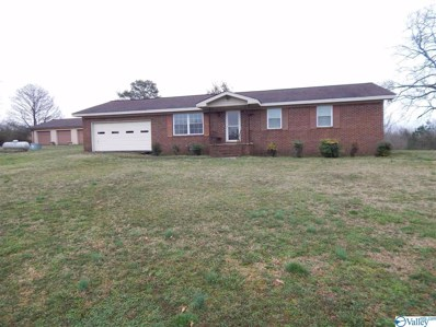 1631 County Road 120, Valley Head, AL 35989