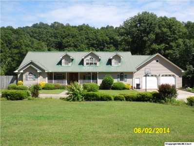 7210 Sand Valley Road, Attalla, AL 35954