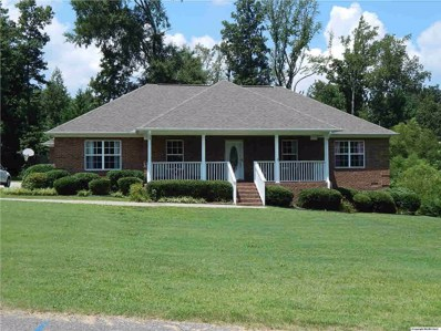 298 Stoney Mountain Drive, Guntersville, AL 35976