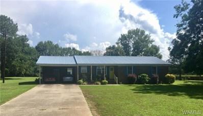 11600 McPherson, Tuscaloosa, AL 35405 - #: 122095