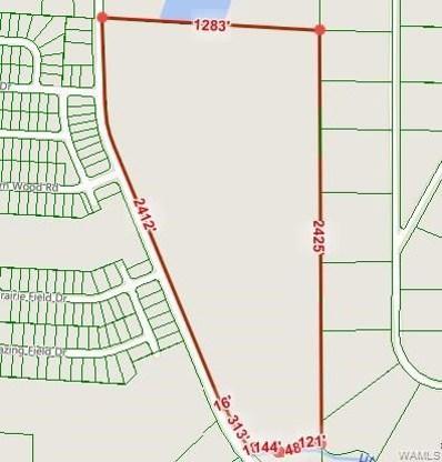 9001 Old Marion, Tuscaloosa, AL 35405 - #: 126379