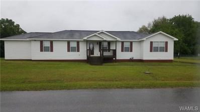 11552 McPherson Landing, Tuscaloosa, AL 35405 - #: 126419