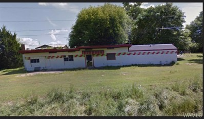 Hwy 43, Northport, AL 35475 - #: 127293