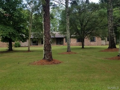 105 Council, Livingston, AL 35470 - #: 127585