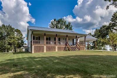 13152 Woodview, Northport, AL 35475 - #: 129869